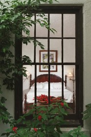 Window - Bed and Breakfast